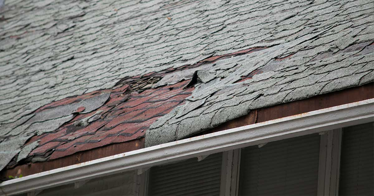 7 Signs That You Need Roof Repair ASAP